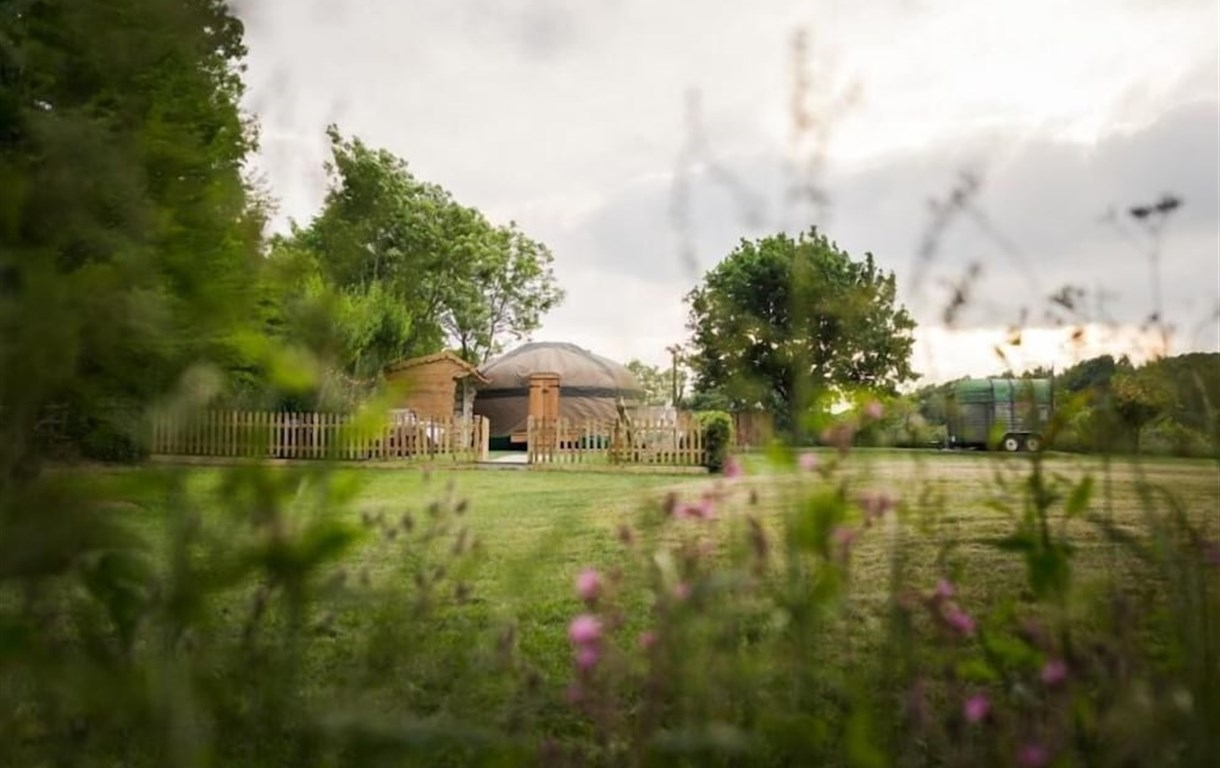 The Yurt At Hollands Farmhouse - Campsite