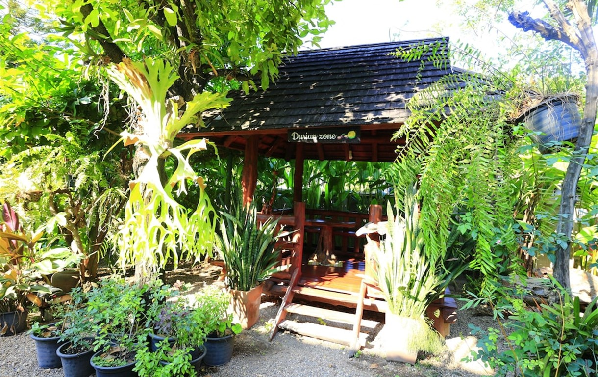 Baan Thapae Boutique Resort And Thai & Relax Massage