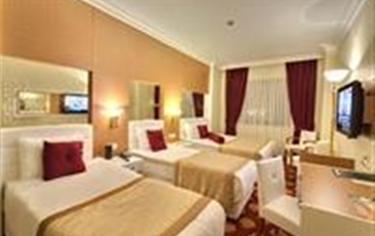 The Business Class Hotel